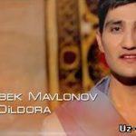 Жасур Мавлонов - Дилдора / Jasur Mavlonov - Dildora