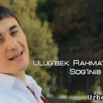 Doston - Soginib / Достон Убайдуллаев - Согиниб
