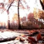 Азиз Раметов - Вдохновлен / Aziz Rametov - Vdoxnavlyon