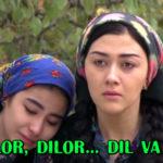 Dilor, Dilor... dil va or (o'zbek film) | Дилор, Дилор... дил ва ор (узбекфильм)