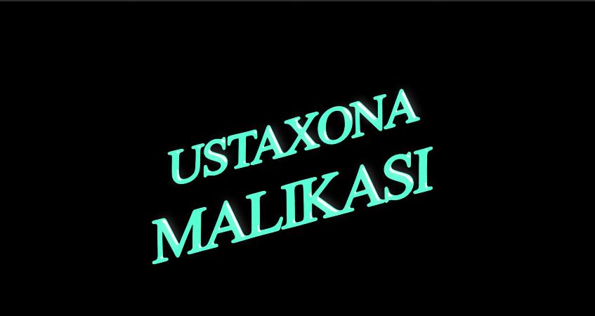 Ustaxona malikasi (o'zbek film) Устахона маликаси (узбекфильм)
