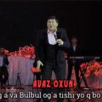Avaz Oxun - Sumbul og`a va Bulbul og`a tishi yo`q bo`rilar ekan