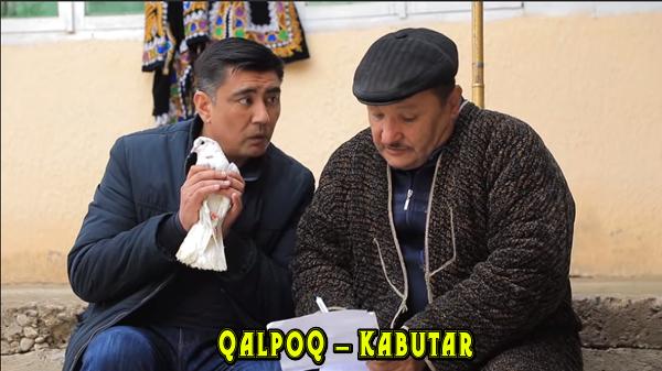 Qalpoq - Kabutar Калпок - Кабутар (hajviy ko'rsatuv)