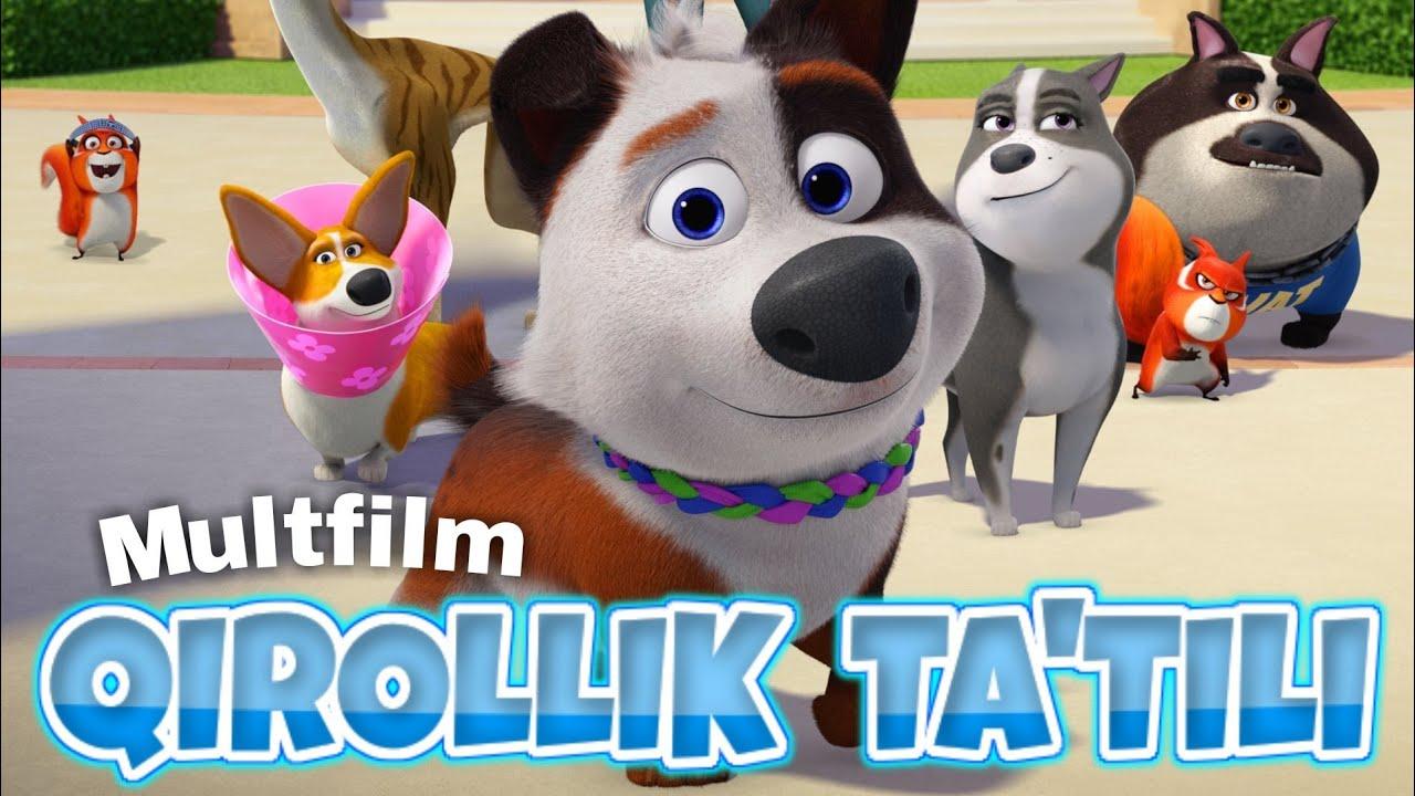 qirollik-tatili-multfilm-uzbek-tilida-kirollik-tatili-cartoon